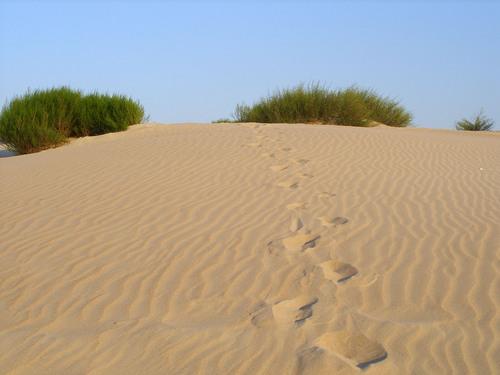 Анапские дюны