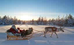 Санта Клаус тренирует своих оленей в Рованиеми